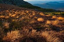 Mount Adams, Presidential Range, White Mountains, White Mountain National Forest, New Hampshire, alpine