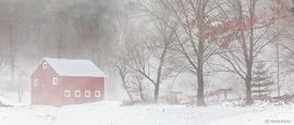 fog, barn, snow, winter, New England, rural