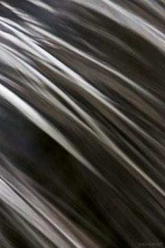 Cascades Abstract