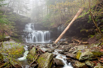 North America, PA, spring, RB Rickett's Falls, Rickett's Glen, Rickett's Glen State Park, Pennsylvania, USA, United States, falls, fog, landscape, mist, scenic, waterfall