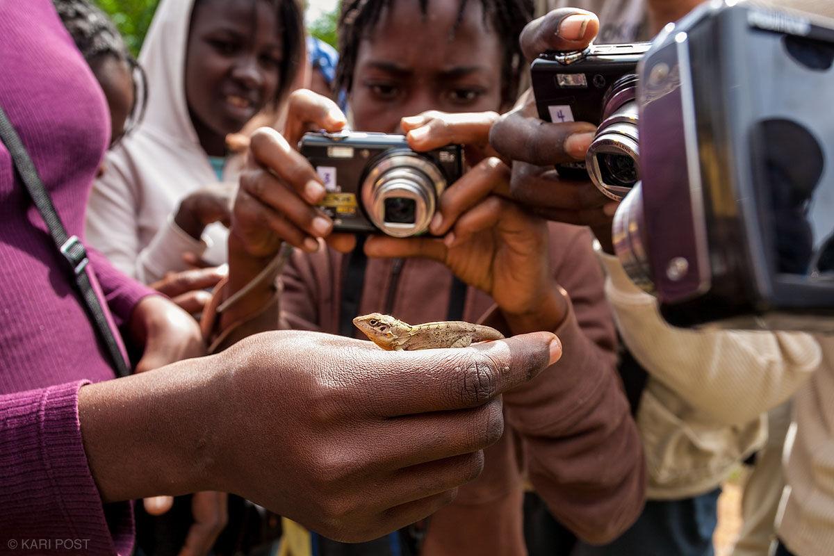 Haiti, Haitian, Parc la Visite, lizard, digital camera, photo, Frame of Mind, photo